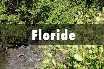 Floride - USA