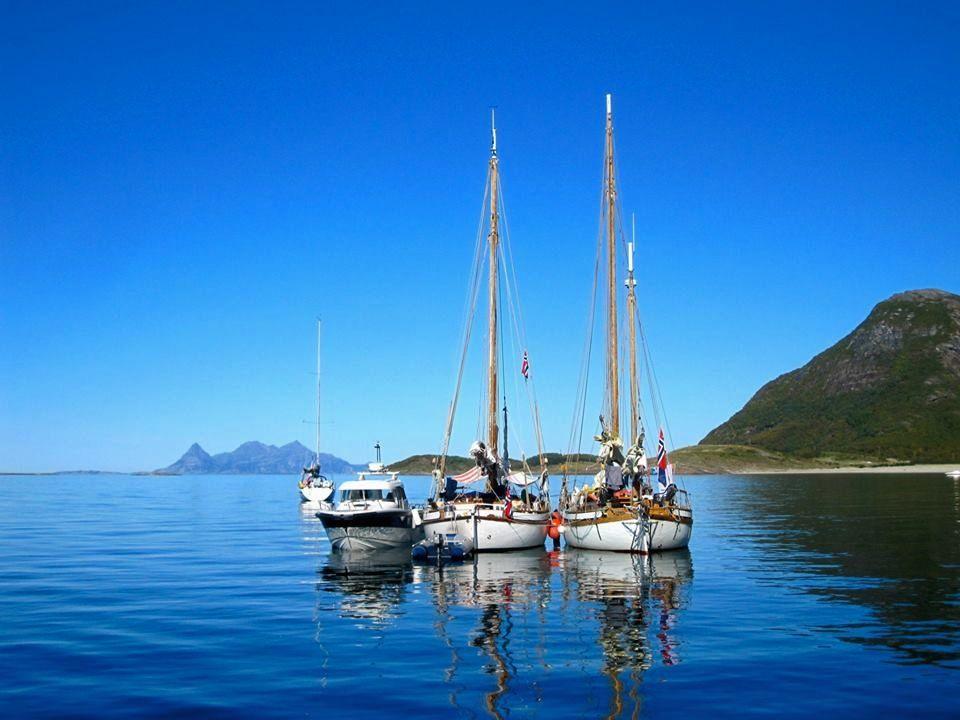 Ile de Sandhornøya au sud de Bodø