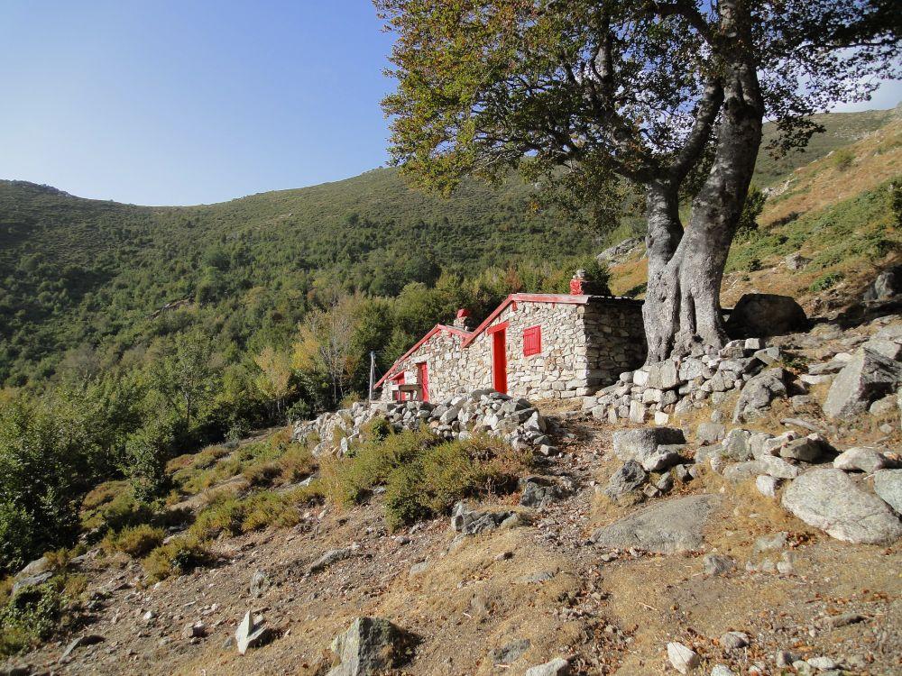 GR20 - Bergeries d'Alzeta