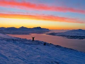 Norvège - Tromsø, Téléphérique Fjellheisen et marche jusqu'au sommet Fjellstua