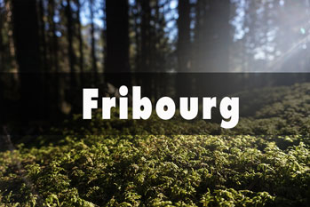 Fribourg - Suisse
