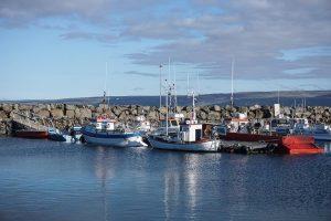 Islande - Holmavik