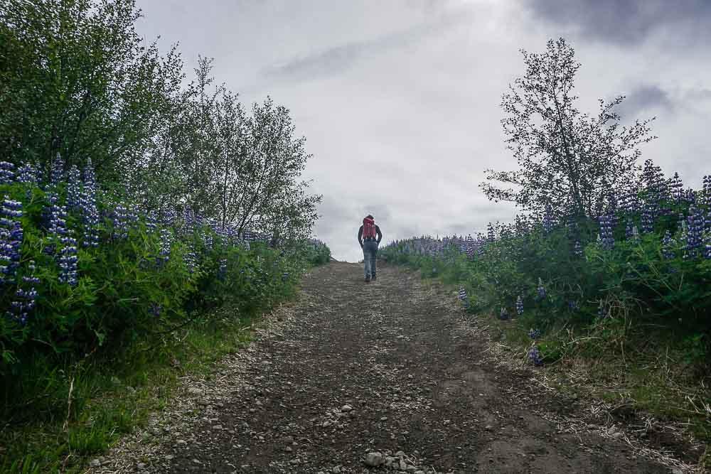 Randonnée à Glymur