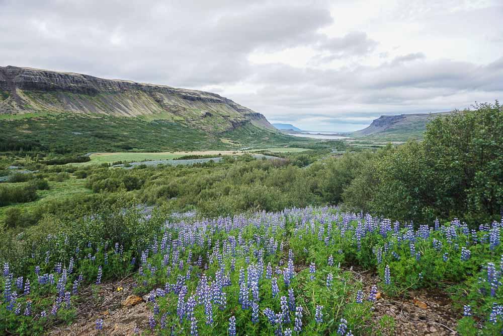 Les paysages de la randonnée à Glymur