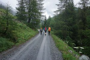 Parc National - Val Müschauns