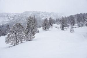 Balade en raquettes au Val d'Hérens - Lac d'Arbey
